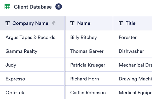 Client Database Template
