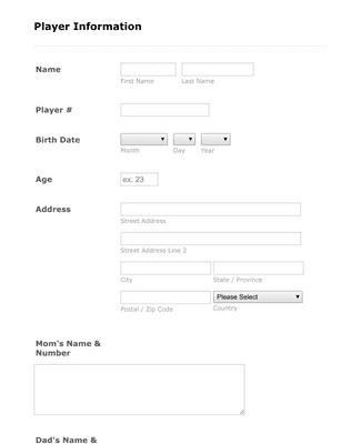 Player Profile Form
