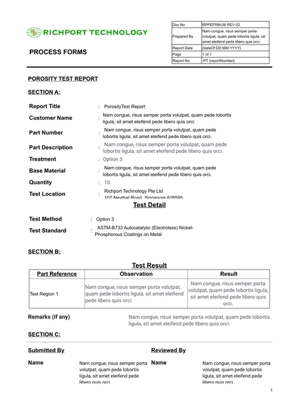TEMPLATE for Reports