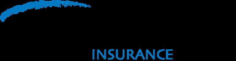 E&O Insurance Application Form