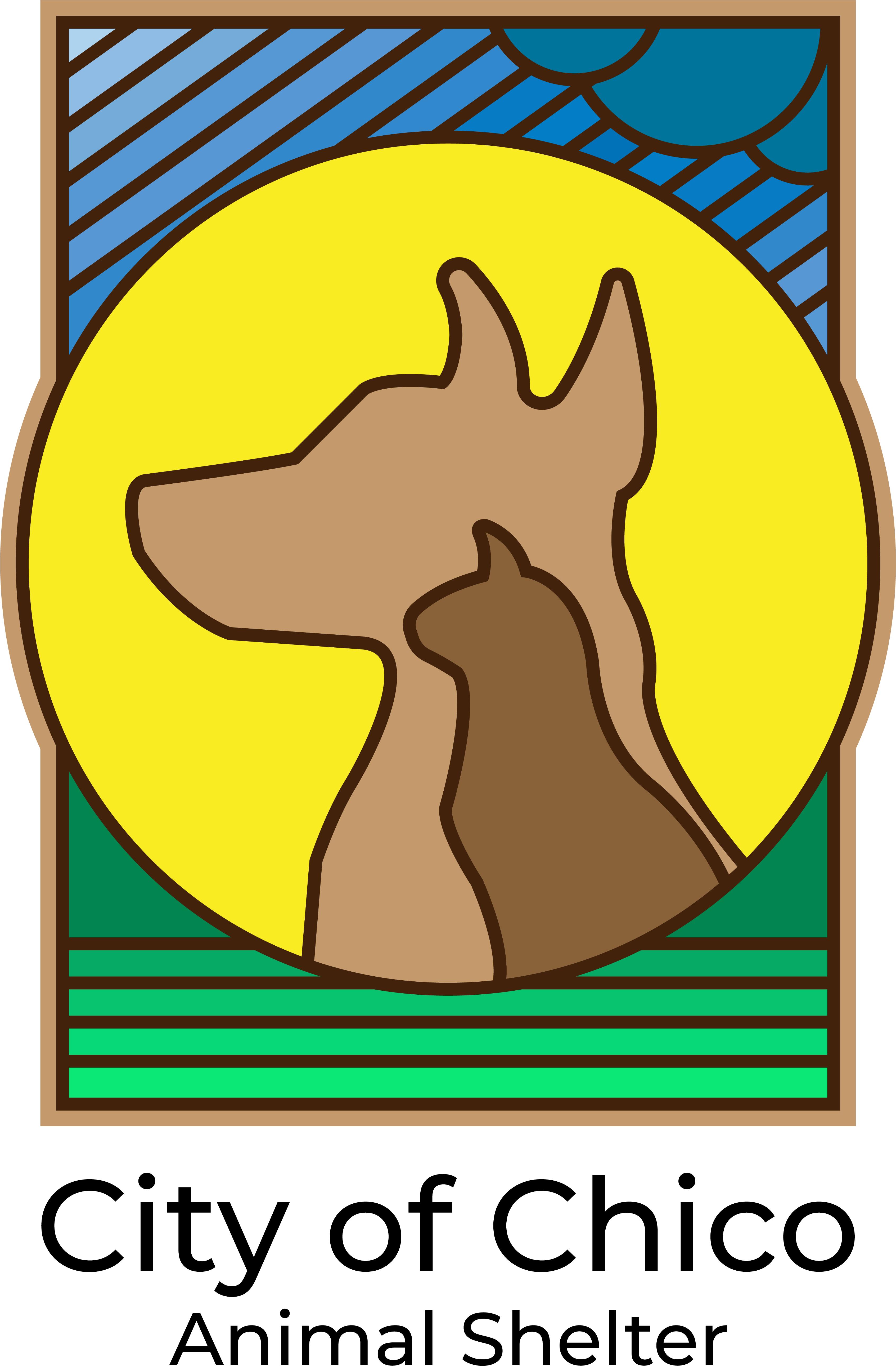 Chico Animal Shelter Internship Application Form