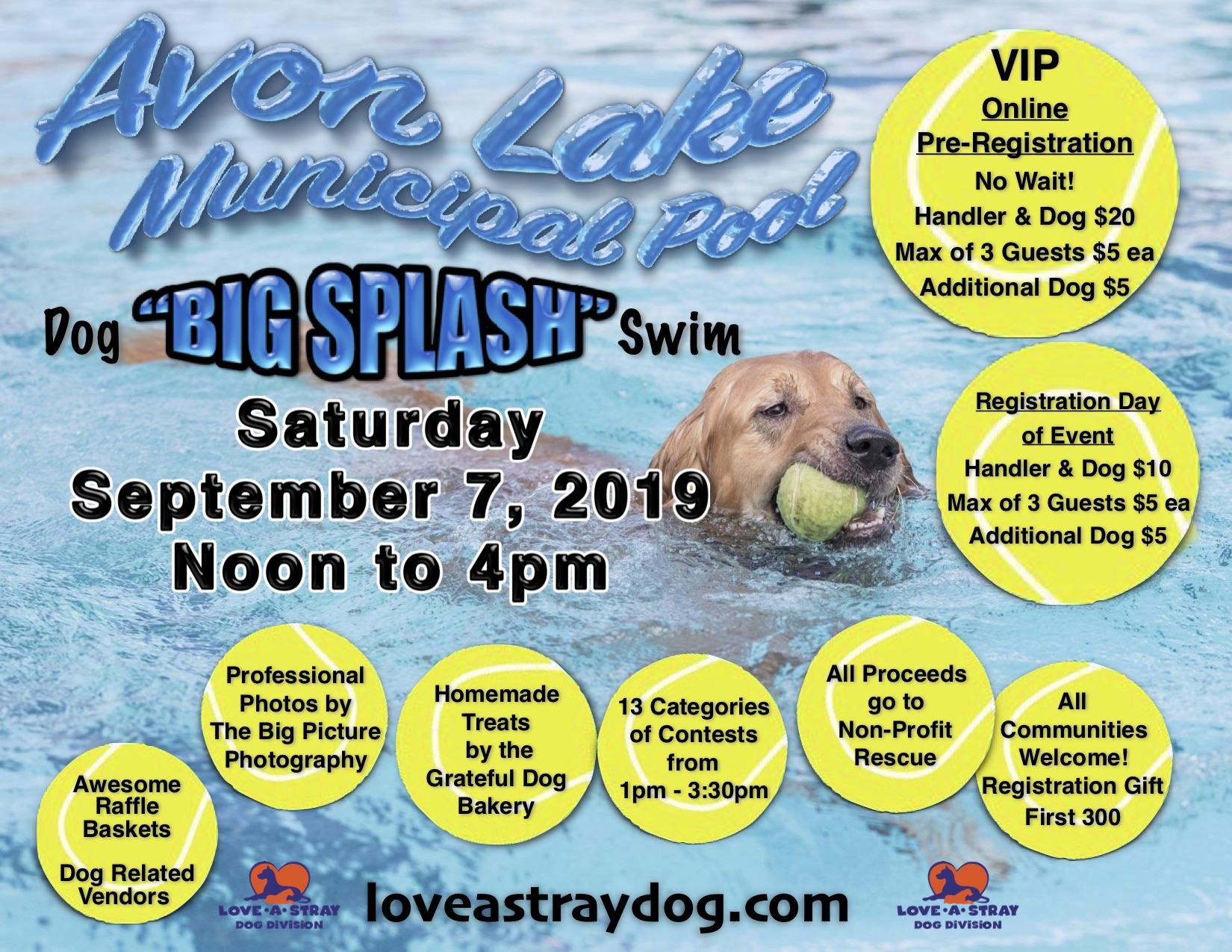 """2019 """"Big Splash"""" Dog Swim"""