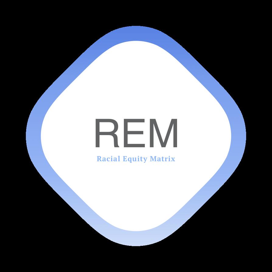 REM Assessment V 0.3