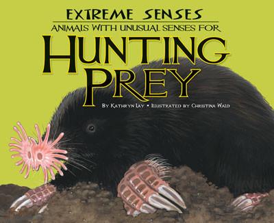 Extreme Senses Cover Image