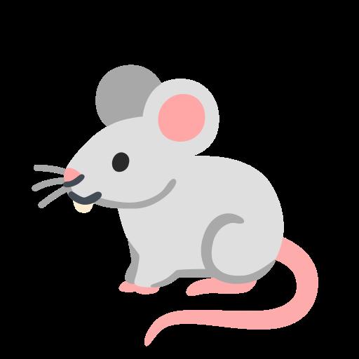 Only rats and mice small stuff, no drama