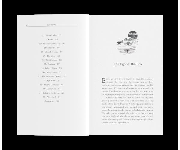 Fiction Novel, Memoir, or Anthology
