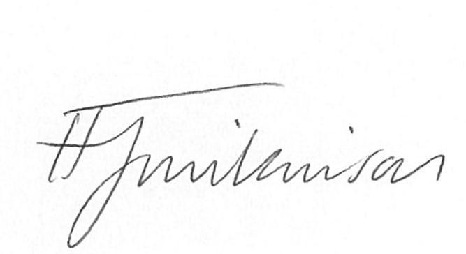 Signature of Provider (Representative)