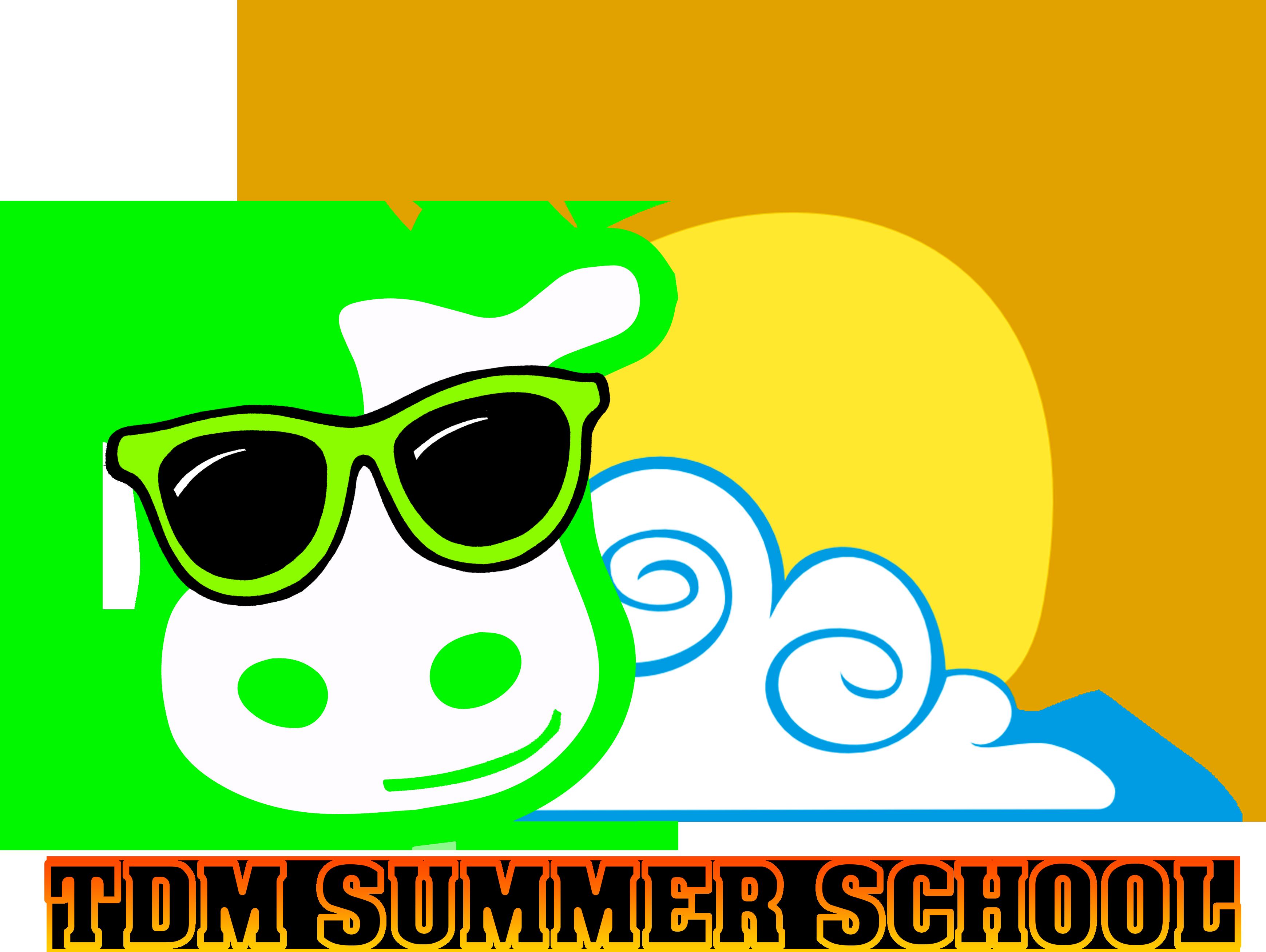 TDM SUMMER SCHOOL 2021