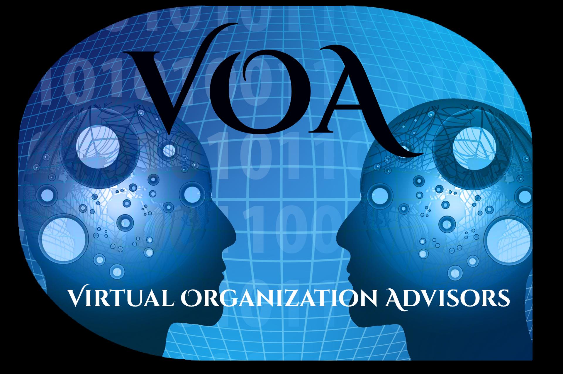 VIRTUAL ORGANIZATION ADVISORS