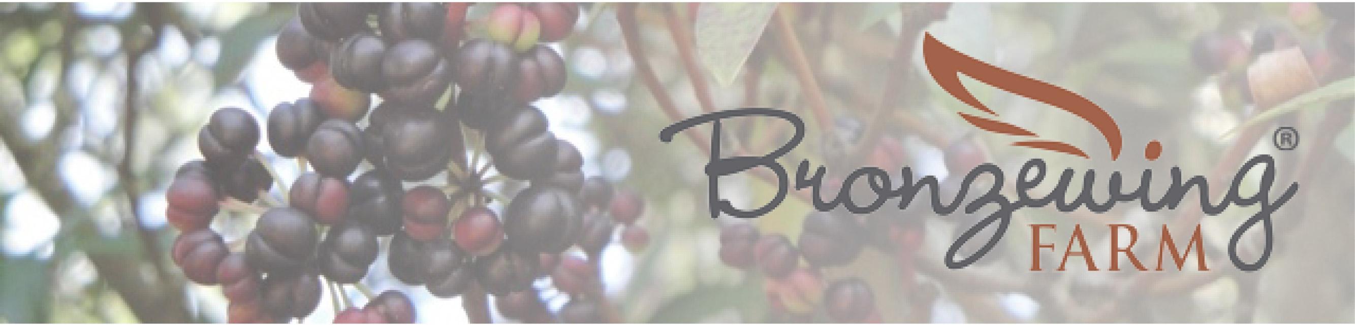 Bronzewing Farm Tasmanan Pepperberries