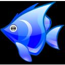 Visit certified zoos & aquariums