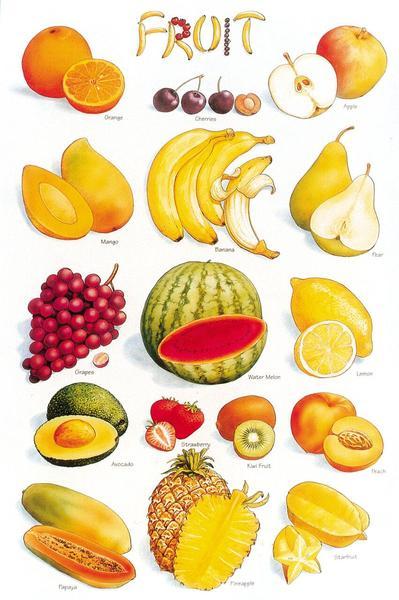 Fruits Floor Puzzles 515-026