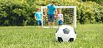 Sport- und Spielrasen