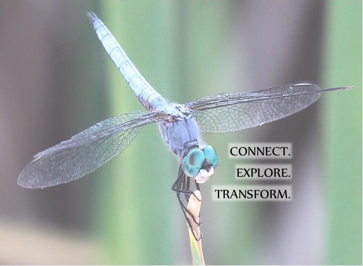 CONNECT ~ EXPLORE ~ TRANSFORM