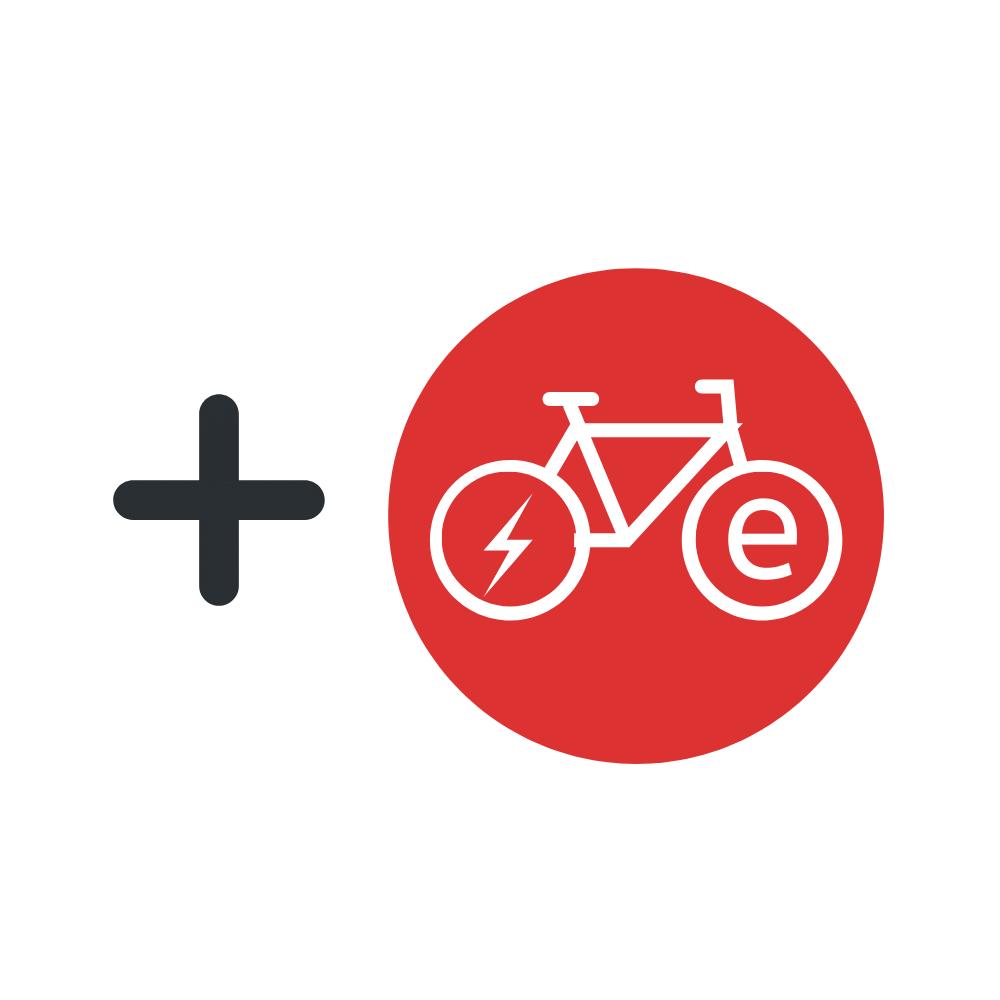 Rental E-Bikes