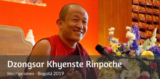 Dzongsar Khyenste Rinpoche Inscripciones 2019