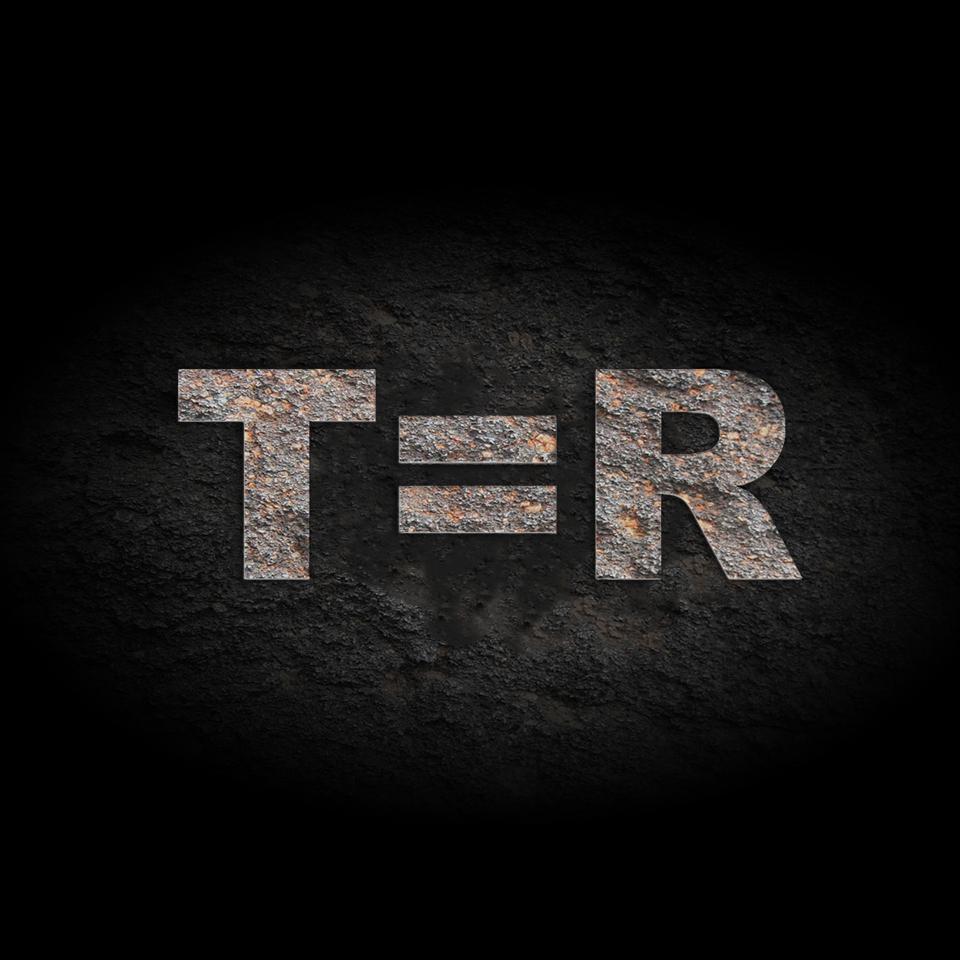 T=R Systems Mentorship Application