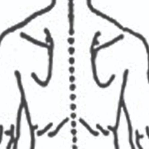 Rygsmerter (brystryg)