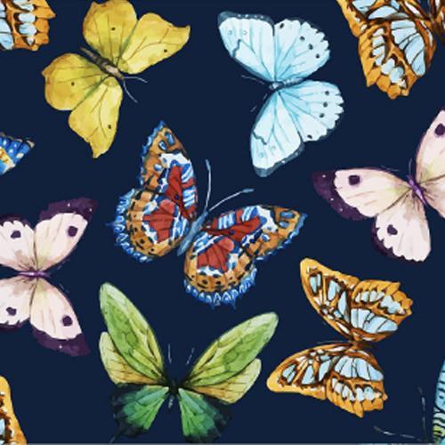 Mariposas Azules   Deanshield