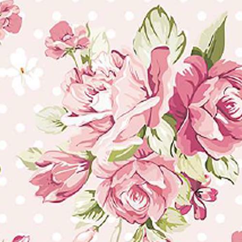 Rosas   Deanshield