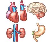 Extrapulmonary Sarcoidosis