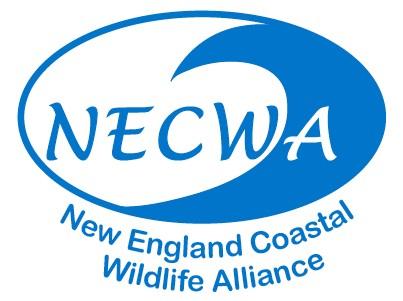 NECWA logo