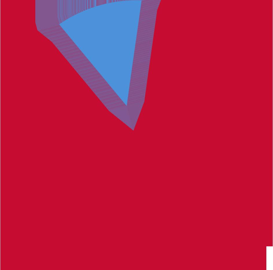 Veritas 2019 Background Check Form