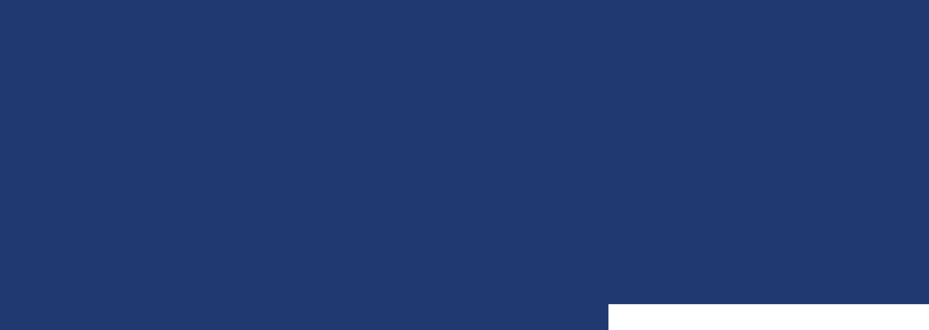 Jess.Travel Logo