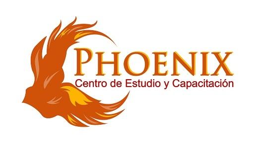 Phoenix Centro de Estudio