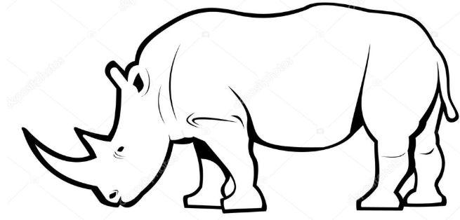#ZooHackathon/Gaborone Registration Form