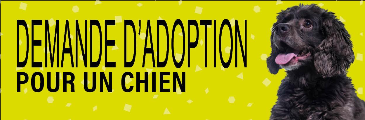 DEMANDE D'ADOPTION POUR UN CHIEN
